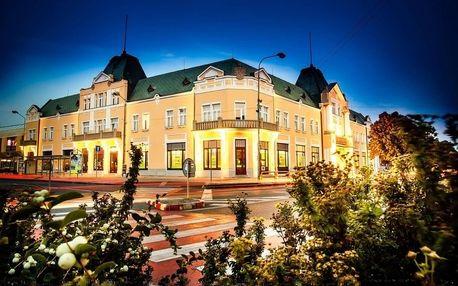 Relax v historickém hotelu Lev *** s wellness