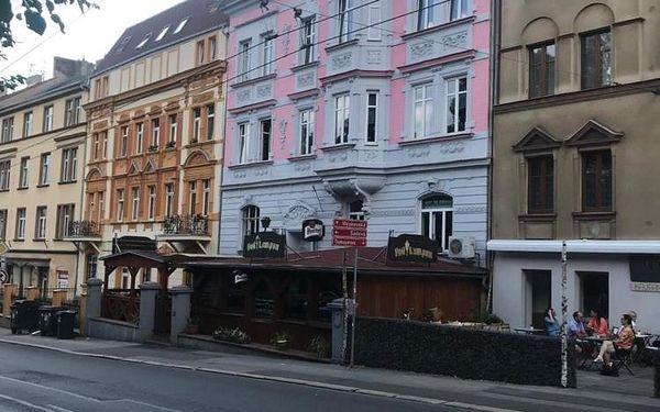 Apartmán v podkroví Palachova 5, Ústí nad Labem