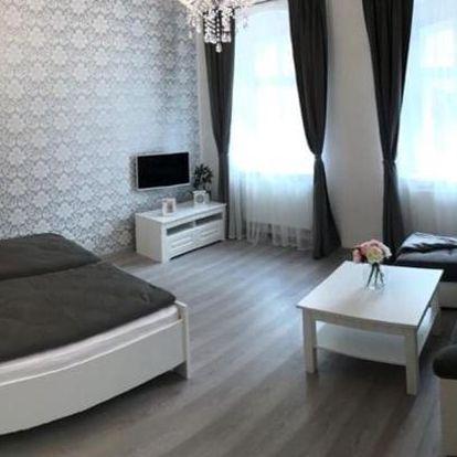 Františkovy Lázně, Karlovarský kraj: Apartmán U Pramene
