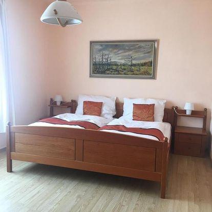 Františkovy Lázně, Karlovarský kraj: VIDHOUS Apartment 1