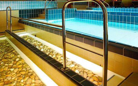 Dunajská streda, Wellness Hotel THERMA**** s bohatým wellness u termálních lázní