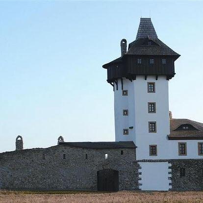 Frýdek-Místek, Moravskoslezský kraj: Penzion Hrad