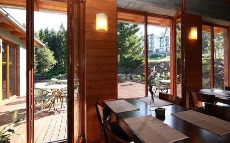 Ostravice, Beltine Forest Hotel**** v malebné přírodě Beskyd