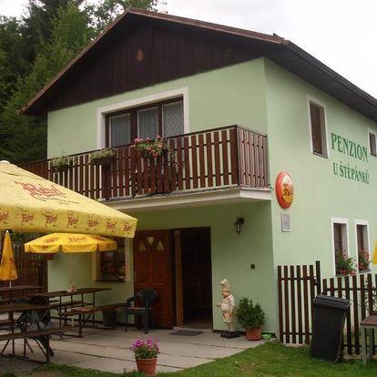 Vysočina: Pension U Štěpánků