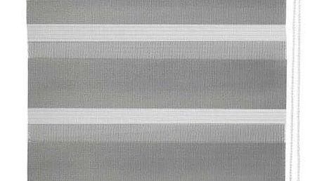 Miadomodo 74229 Dvojitá roleta, 50 x 100 cm, šedá