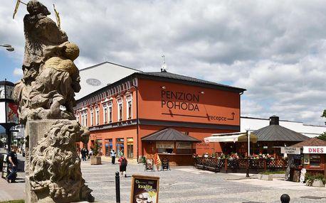 Trutnov, Královéhradecký kraj: Penzion Pohoda