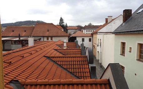 Sušice, Plzeňský kraj: Apartmán McVitek