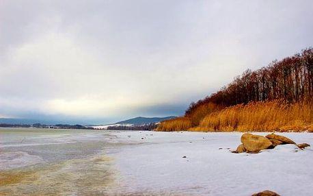 Šumava: Pobyt jen 300 m od jezera Lipno a u běžkařských i turistických tras v Penzionu Rex s polopenzí