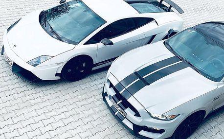 Lamborghini Gallardo 570-4 vs. Ford Mustang SHELBY