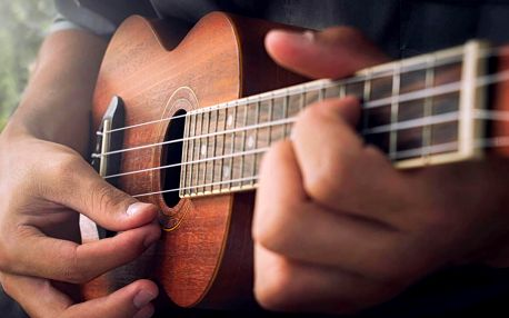 Úspěšný a osvědčený online kurz hry na ukulele