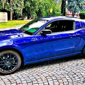 Frajerská jízda ve Ford Mustang 2014