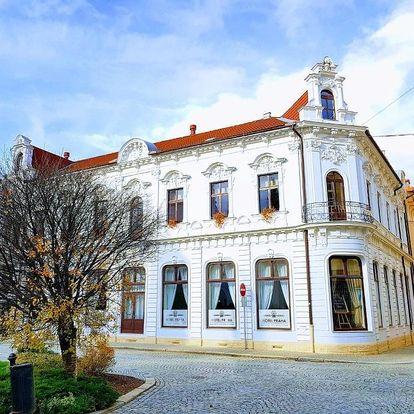 Ostravsko - Slezsko: Hotel Praha