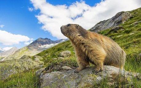 Pěší turistika v rakouských Alpách