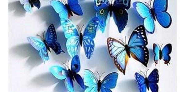 Sada 12 motýlků   Žlutá5