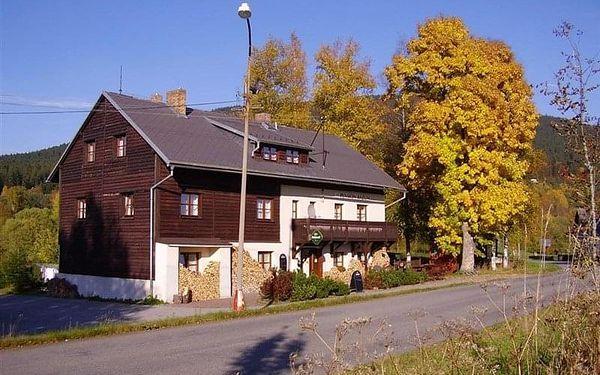Horní Vltavice - penzion BÁZUM, Česko