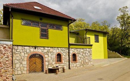 Jižní Morava: Penzion - Vinařství Hanuš