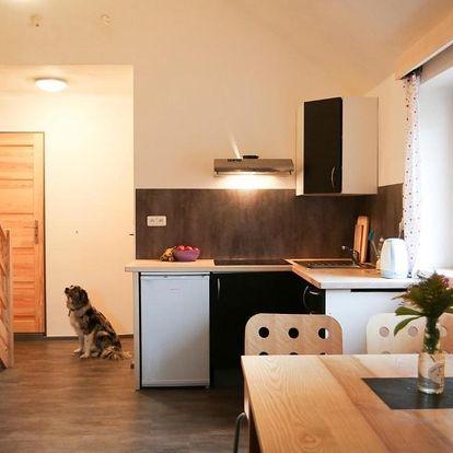 Olomoucký kraj: Apartmán Fydorka