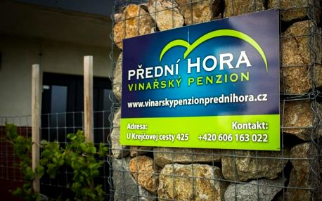 Velké Bílovice, Jihomoravský kraj: Vinařský penzion Přední Hora