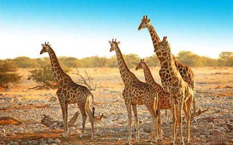 Namibie letecky na 13 dnů, polopenze