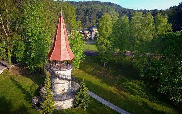Léčebný dům Borina (Baník), Bojnice, vlastní doprava, plná penze4