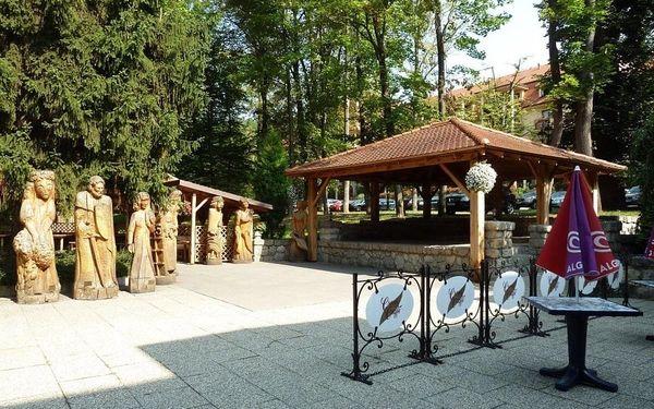 Léčebný dům Borina (Baník), Bojnice, vlastní doprava, plná penze5
