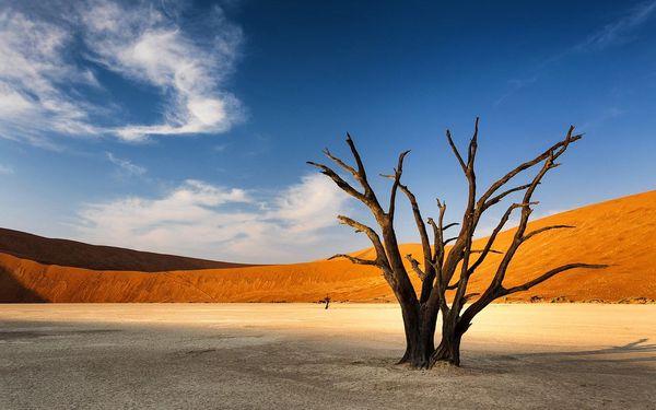 Rozmanité krásy Namibie se safari, letecky, polopenze2