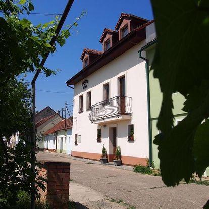Jižní Morava: Penzion U Ivana