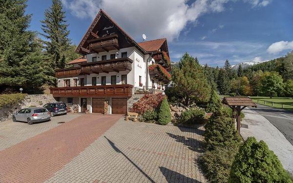 Krkonoše: Hotel Martin & Kristýna