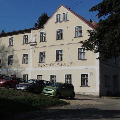Lázně Libverda, Liberecký kraj: Pension Protěž