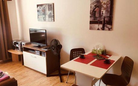 Lipno nad Vltavou, Jihočeský kraj: Apartmán Na Pohodu 25