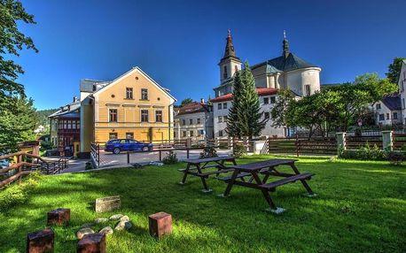 Rokytnice nad Jizerou, Liberecký kraj: Yellow Ski Apartments