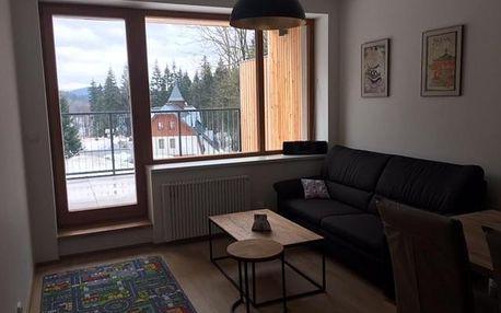 Bedřichov, Liberecký kraj: Apartmán Čihadla