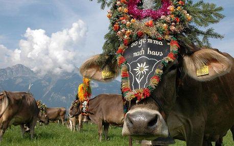 Slavnost shánění stád, Tyrolsko