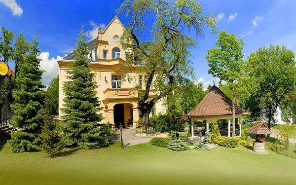 Polsko - Kudowa-Zdrój: Kurort Agnes Willa Sanssouci-Dauc