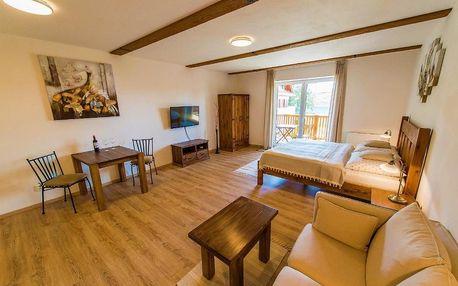 Lipno nad Vltavou, Jihočeský kraj: Apartment Marie