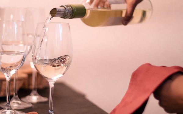 Degustace tapas a exkluzivních vín pro 1 osobu2