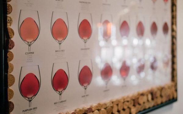 Degustace tapas a exkluzivních vín pro 1 osobu4