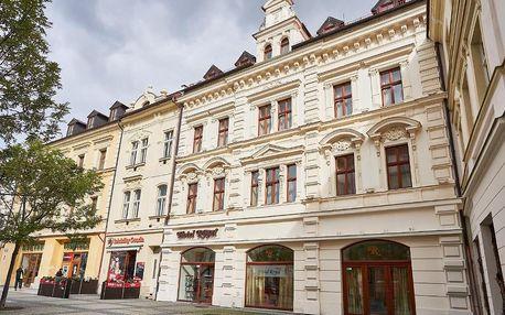 Chomutov, Ústecký kraj: Hotel Royal