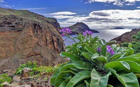 Madeira - poznávací, Madeira
