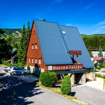 Rokytnice nad Jizerou, Liberecký kraj: Garni Hotel Horské Špičky