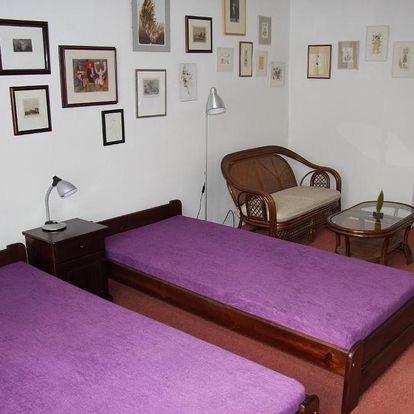 Lázně Poděbrady, Středočeský kraj: Angel Room Poděbrady