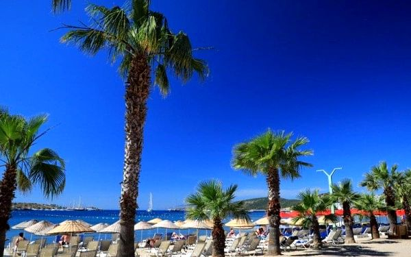 Turecké delikatesy, Hotel Very Chic (ex. Magnific), Bodrum, Turecko, Bodrum, letecky, all inclusive4