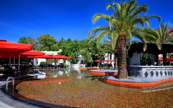 Turecké delikatesy, Hotel Very Chic (ex. Magnific), Bodrum, Turecko, Bodrum, letecky, all inclusive5