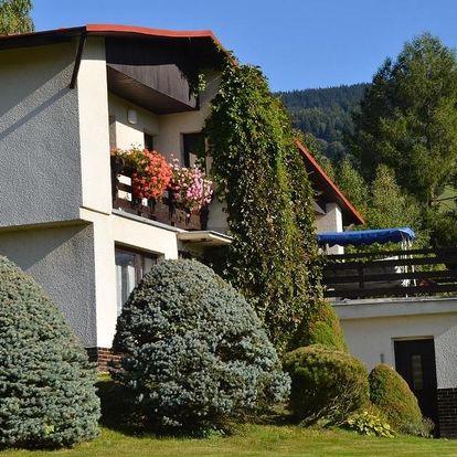 Rokytnice nad Jizerou, Liberecký kraj: Apartmán Braun