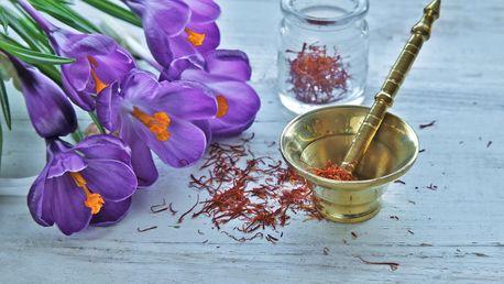 Sušené čnělky tibetského šafránu pro zdraví i do kuchyně