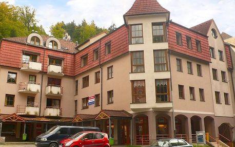 Lázeňské město Jáchymov: Apartment Lanovka-1