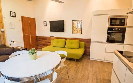 Třeboňsko: Apartman Masne kramy