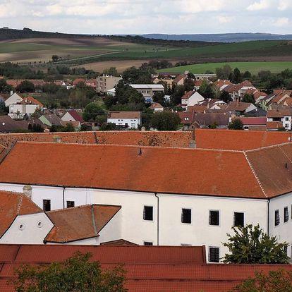 Pobyt na zámku Čejkovice s polopenzí a prohlídkou