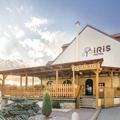 Jižní Morava: Hotel Iris***