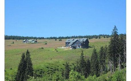 Letní pobyt na chatě Malá Rennerovka. Příjemná atmosféra a domácí prostředí.